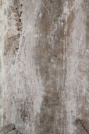 Grunge aged wall surface texture