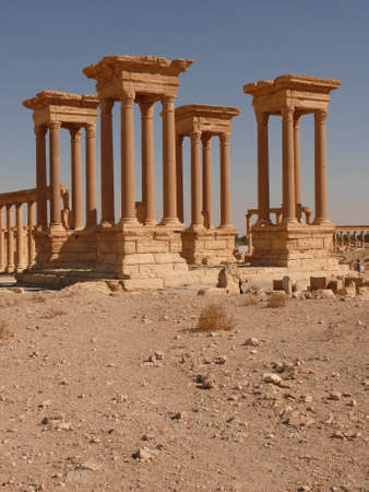 archaeological: Ancient columns, archaeological site, ruins, UNESCO heritage, Palmyra, Syria