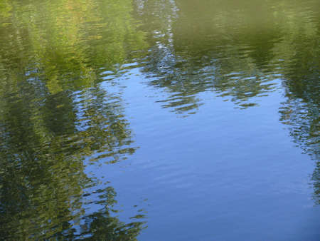 Trees reflecting in water surface, abstract texture, background photo