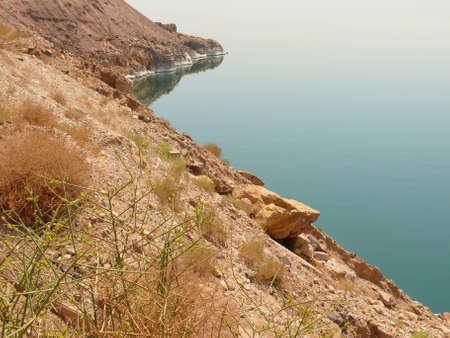 mineralized: Seashore, coast line of the Dead Sea, showing sediment of salt