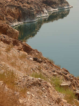 mineralized: Coastline of the Dead Sea, with salt sediments