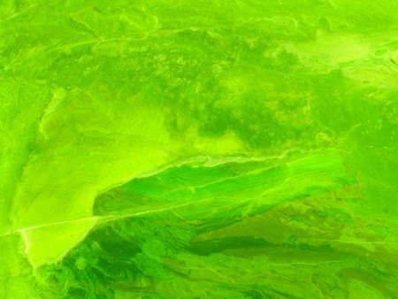 Abstract grungy background in psychedelic green. Aged paper texture. photo