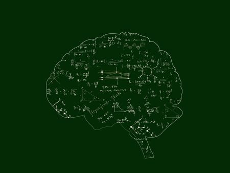 Mathematical equations in  Brain graphic on blackboard,green color