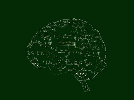 Mathematische Gleichungen in Gehirngrafik auf Tafel, grüne Farbe