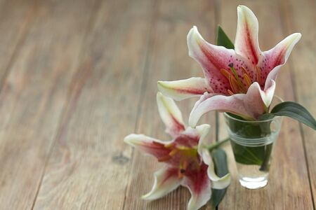 Pink and white star gazer lillies in a small vase on a wooden background photo