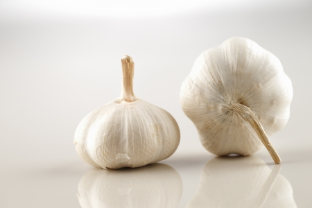Two garlic bulbs shot against a white background photo