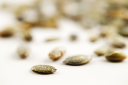 Organic green pumpkin seeds shot in an abstract manner against a white background Stock Photo - 22169741