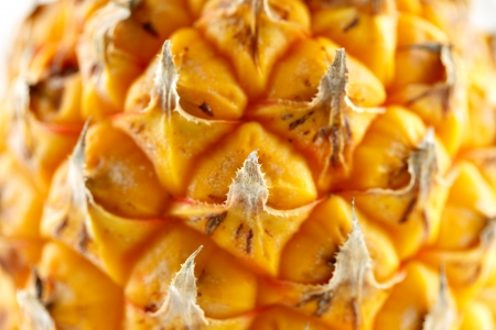 A close-up image of a fresh organic pineapple Stock Photo - 22169838