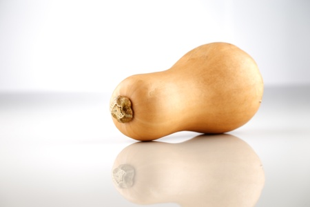 A whole organic Australian Squash photographed on a white ceramic surface Stock Photo - 22169822