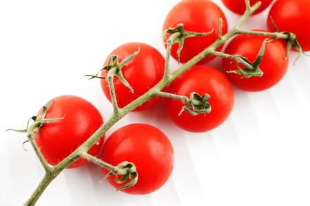 Organic fresh tomatoes on the vine, shot against a white background Stock Photo - 22169764