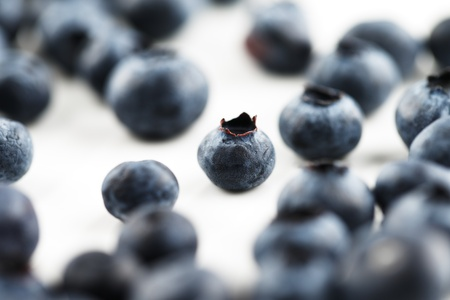 Organic blueberries shot in an abstract manner on a white ceramic surface Stock Photo - 22169766