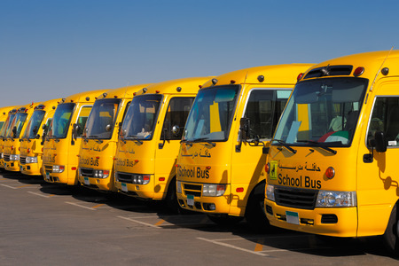UAE, Middle East  An oblique perspective of 8 yellow Arabic school busses Publikacyjne
