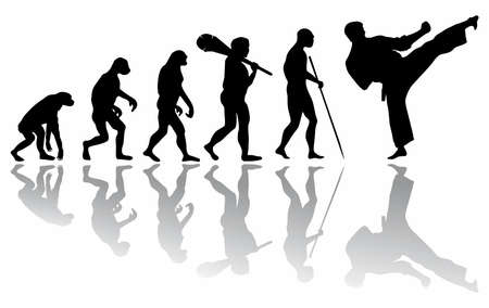 The evolution of Karate martial arts. The evolution of the monkey from prehistoric times to the athlete.