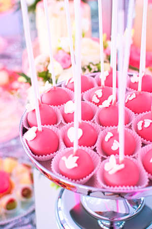 Chocolate Raspberry Cake pops. Gourmet dessert. Perfect for any occasion, incl. birthday party. American cuisine.