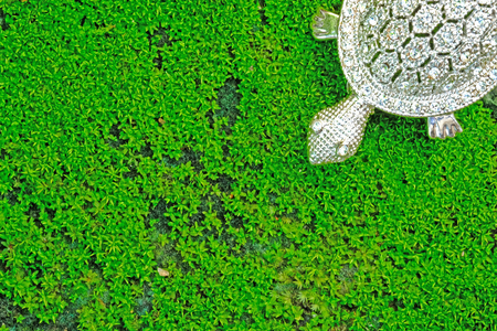 velvety green natural moss covered stone walkway showing with a diamond and silver turtle pendant