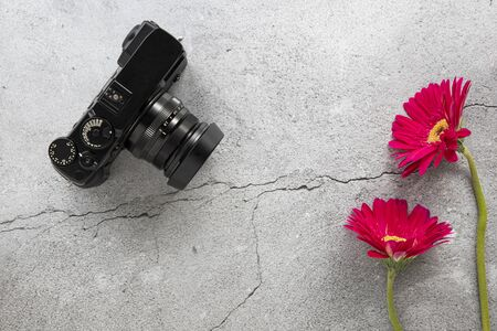A modern DSLR camera and red gerbera flowers on cracked concrete background. Top view, flat lay design with copy space.