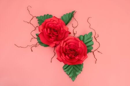 Two paper roses and dried veins on salmon pink background.