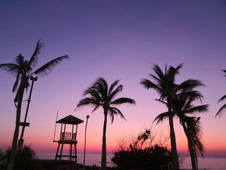 Silhouettes of a tall lifeguard tower, coconut trees, and lamp posts againt the orange and indigo lights at the seashore in the evening at sunset. 写真素材