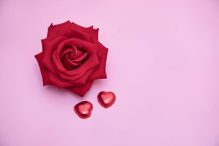 Closeup of a beautiful blooming red rose with red candy hearts on pink background. Valentines, day  anniversary, wedding concept. 写真素材