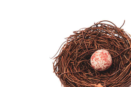 A  bird nest with a single spotted egg, isolated on white background
