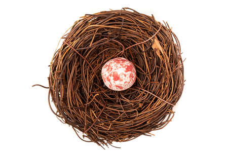 A bird nest with one small spotted pink and white egg. Stock Photo