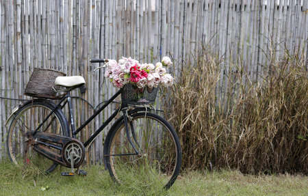 An old rusty bicycle with bouquet of flowers in the front basket. Bicycle stands in front of an old bamboo wall. Фото со стока