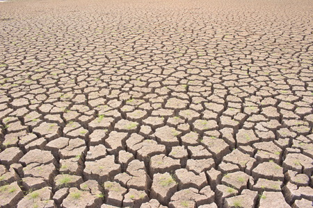 lack water: Aridity the impact of global warming on the ground sea lake  dry  lack of water. Stock Photo