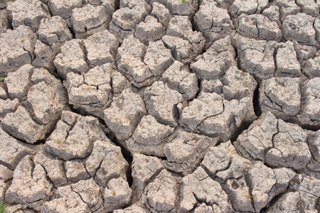 barrenness: Aridity the impact of global warming on the ground sea lake  dry  lack of water. Stock Photo