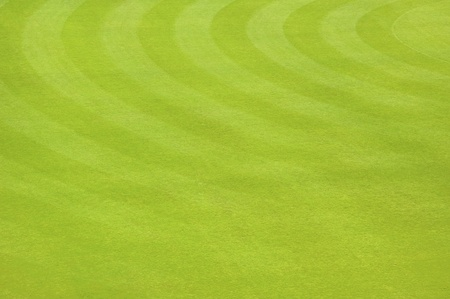 level playing field: Green Empty Soccer Field Background Texture Pattern Stock Photo