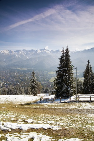 Autumn view of spruce and Tatra Mountains - first snow Stock Photo - 10941365