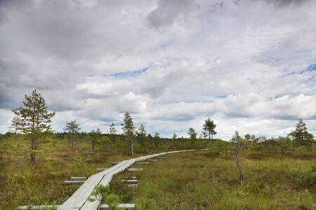 pedestrian walkway: Pedestrian Walkway over Swamp Area in National Park