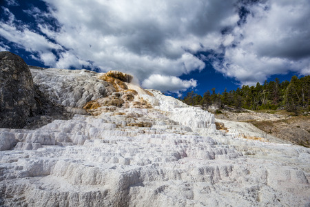 Mammoth Hot Springs, Yellowstone National Park, Wyoming, USA photo