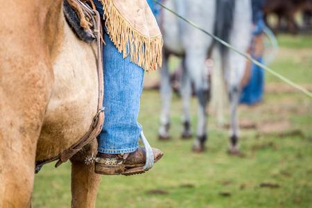 vaquero: Montar Vaquero en un caballo marr�n.