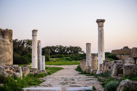 apostle paul: Ancient city of Salamis located in eastern part of Cyprus.