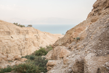nature reserves of israel: Canyon in En Gedi Nature Reserve and National Park next to Dead Sea, Israel Stock Photo