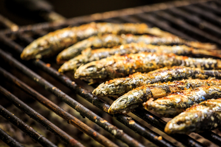 sardine: Freshly grilled sardines on the grill, Portugal