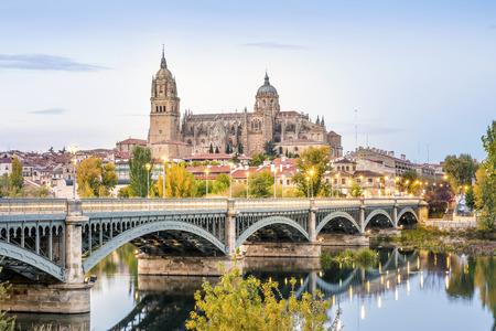 살라망카 대성당과 Tormes 강, 카스 티 야와 레온, 스페인 다리