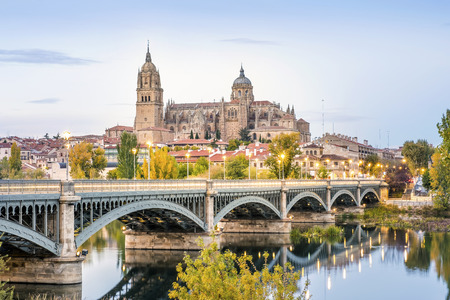 Catedral de Salamanca e ponte sobre o rio Tormes, Castilla e Leão, Espanha