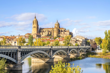 Kathedraal van Salamanca en brug over Tormes-rivier, Castilla en Leon, Spanje