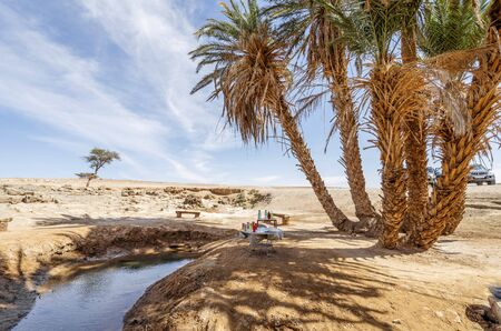 Oasis with palm trees on Sahara dessert, Morocco, Africa Stock Photo