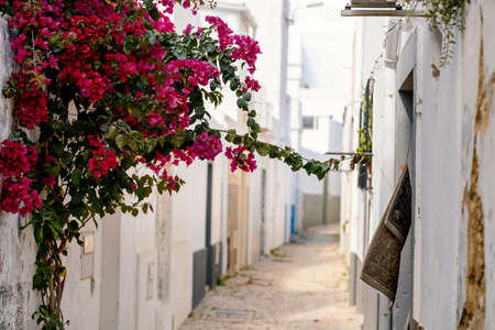 Narrow street with white houses and flowers in Olhao, Algarve, Portugal
