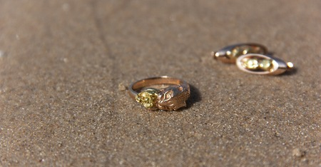 The original gold ring and earrings lie on the wet sand at the water's edge. Close-up shot