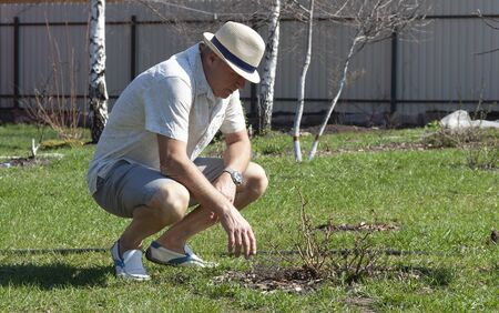 man checks planting in the garden in the spring