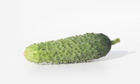 Fresh cucumber was shot close up on white background