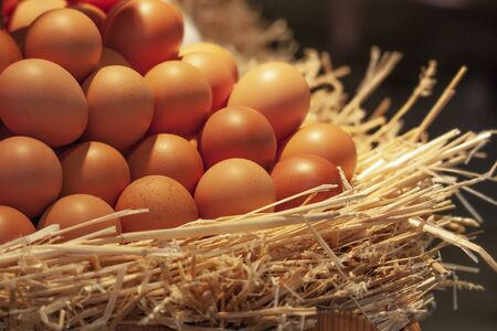Eggs in a straw nest on a dark background Banque d'images