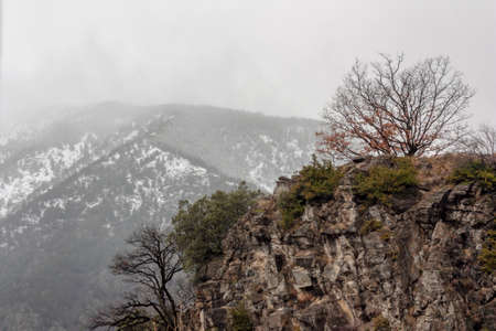 Winter mountain landscape with a green-covered rock in the foreground on a cloudy day