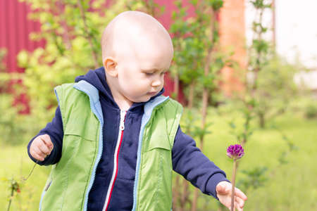 Baby reaches for a flower to pluck it while walking in nature