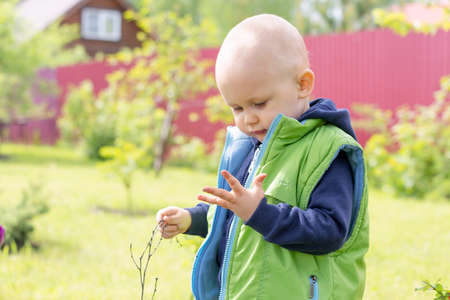 The child looks at his palm, which he has soiled with a twig picked up from the ground