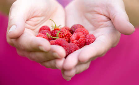 Red berries lie on the palms of womens hands, folded in the shape of a heart Zdjęcie Seryjne