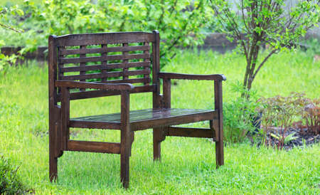 The wooden bench in the rain on the background of fresh greenery Zdjęcie Seryjne